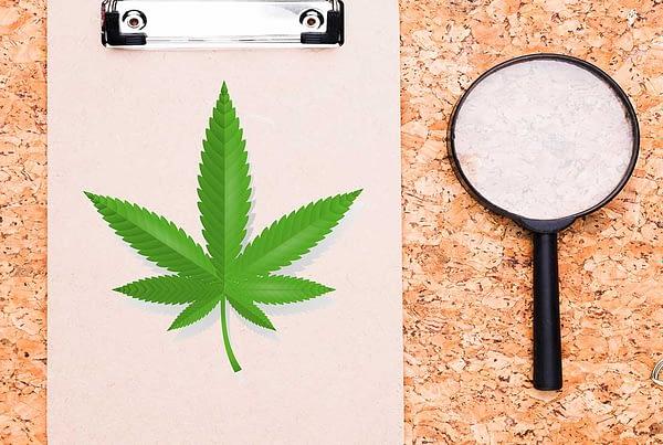 TechPOS=CannabisStoreInspection-Horizental