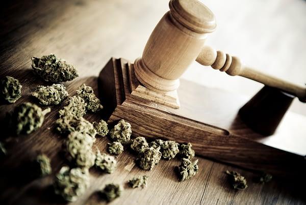 TechPOS-Cannabis-POS-Law